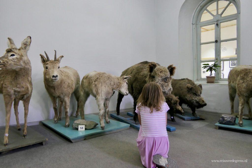 Historische museum Karakol