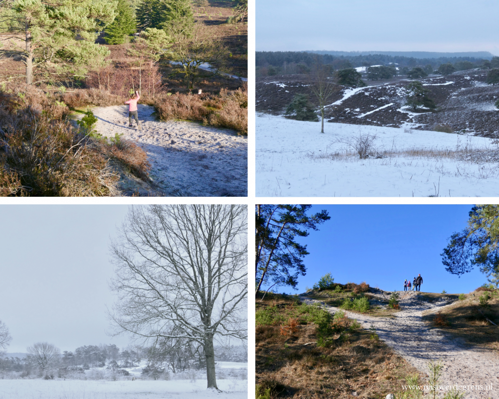 Brunssummerheide in de winter