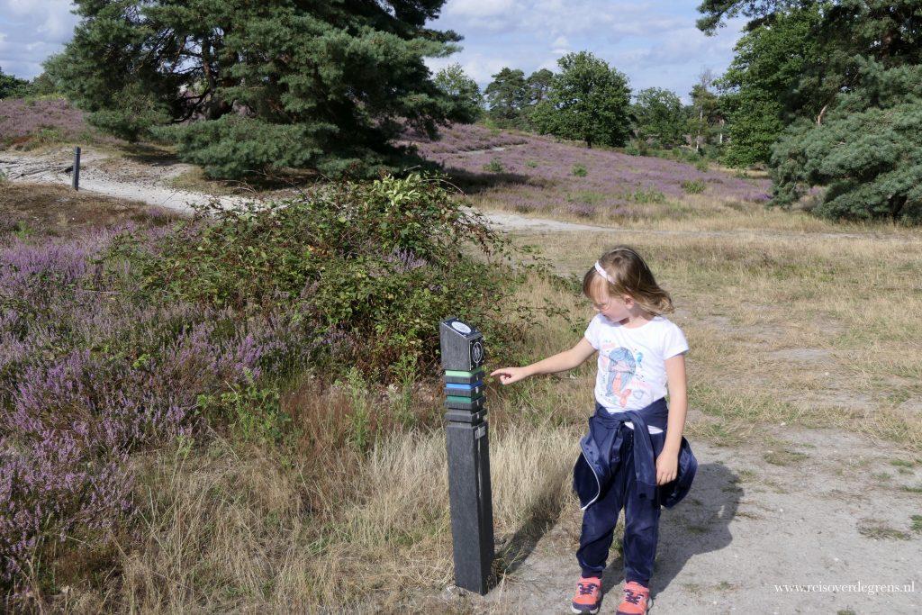 Paaltjes met wandelroutes op de Brunssummerheide