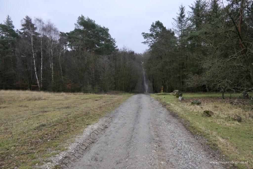 Brander Wald Aken