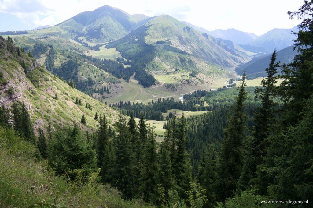 Bloemenvallei Valley of Flowers Kirgizië